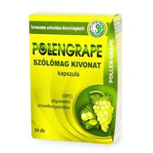 Dr. Chen pollengrape kapszula - 30db