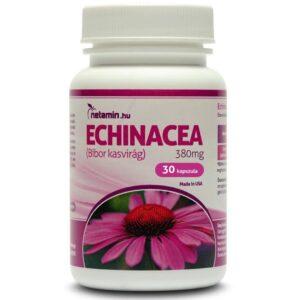 Netamin Echinacea 380 mg tabletta - 30db
