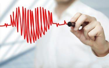 Szív és érrendszer - BioNagyker.com