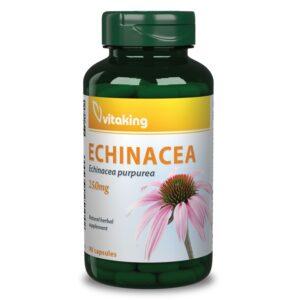 Vitaking Bibor kasvirag Echinacea kivona - 90db