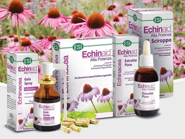 ESI Echinacea Bíbor kasvirággal támogatja a szervezet védekező képességét