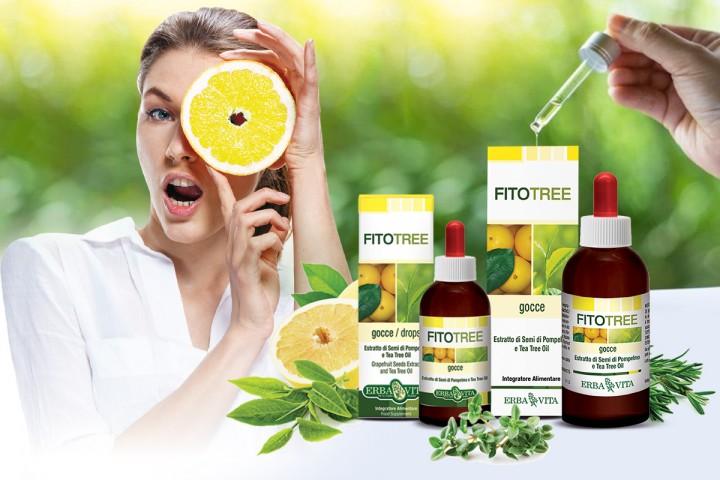 FitoTree termékek – baktériumok, gombák és vírusok ellenszere